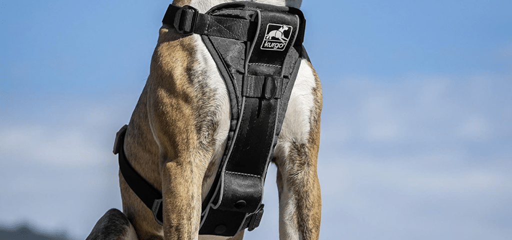 Kurgo Tru-Fit Smart Dog Harness